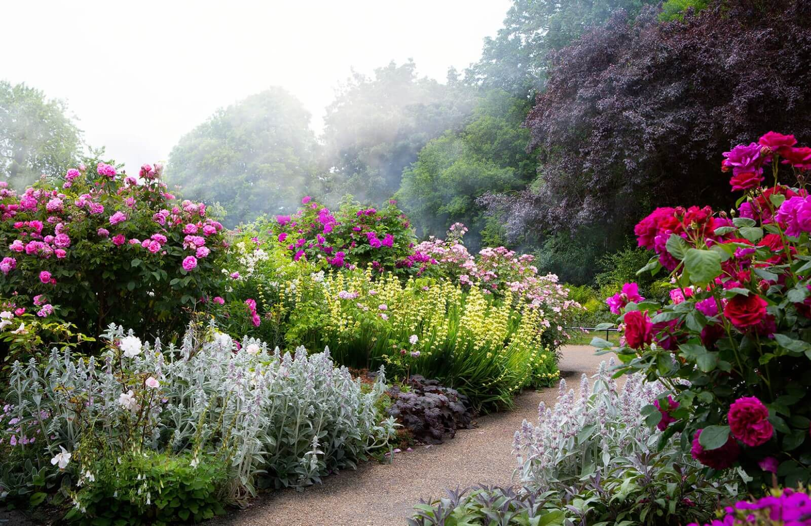Garden Path Landscape