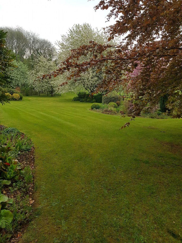 Cutting Lawn - Grounds Maintenance