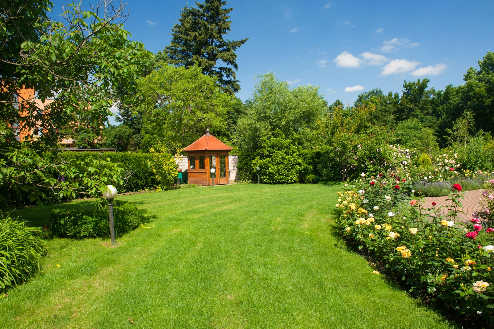 Garden with Shed