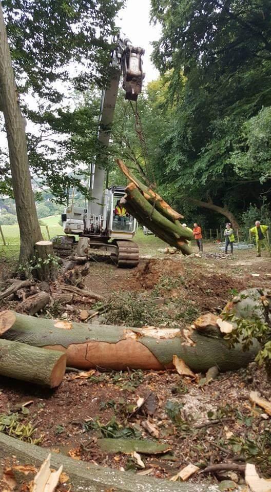 Moving Logs